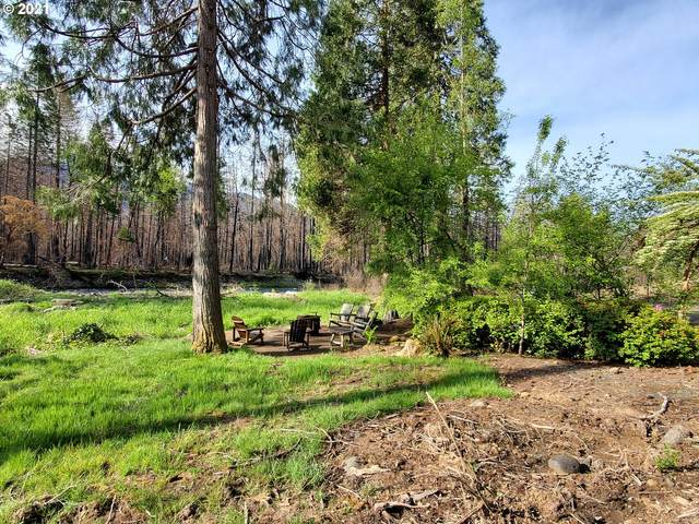 53180 Mckenzie Hwy, Blue River, OR 97413 (MLS #21202127) :: Coho Realty