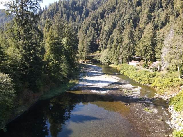Vl Wilson River Hwy, Tillamook, OR 97141 (MLS #21205111) :: Premiere Property Group LLC
