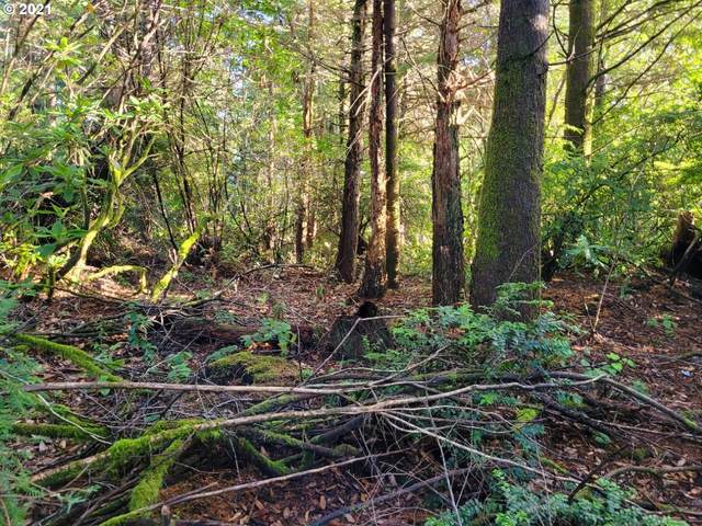 Old Mill Rd #9, Port Orford, OR 97465 (MLS #21210466) :: Premiere Property Group LLC