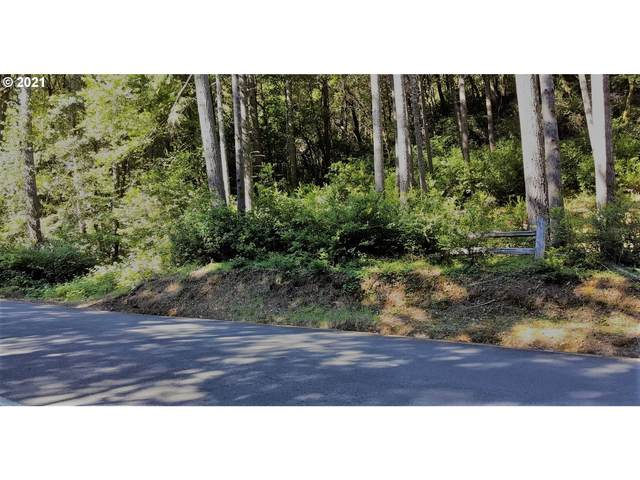 Agness-Illahe Rd, Agness, OR 97406 (MLS #21212139) :: McKillion Real Estate Group