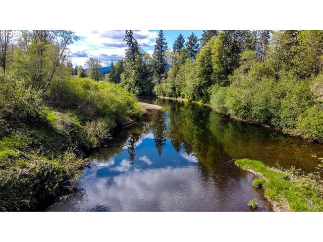 St Hwy 6 #4, Chehalis, WA 98532 (MLS #21216936) :: The Pacific Group