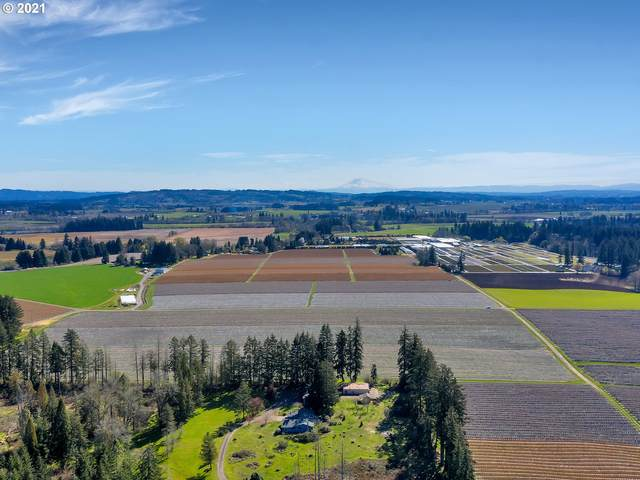 11760 SW Campbell Rd, Hillsboro, OR 97123 (MLS #21217593) :: Next Home Realty Connection