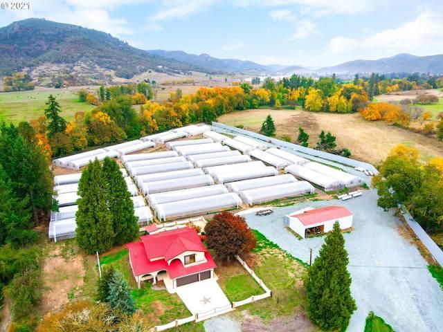 2305 Glenbrook Loop Rd, Riddle, OR 97469 (MLS #21221481) :: Holdhusen Real Estate Group