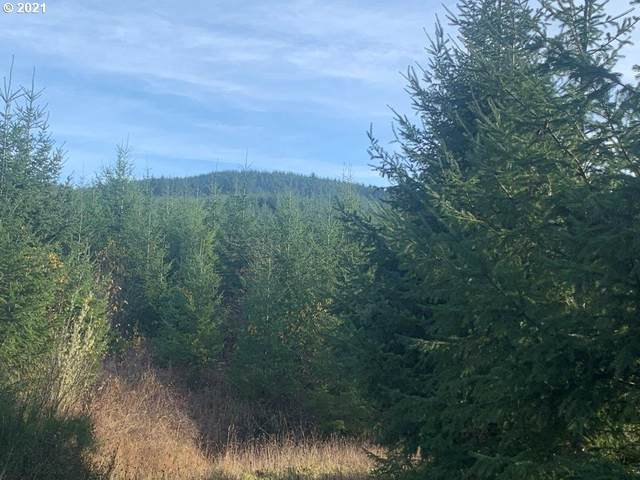 0 Hwy 36 Mp 43-2, Cheshire, OR 97419 (MLS #21225874) :: Song Real Estate