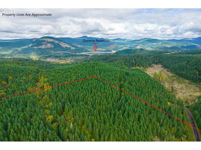 Garoutte Rd Tl900, Cottage Grove, OR 97424 (MLS #21230090) :: Premiere Property Group LLC