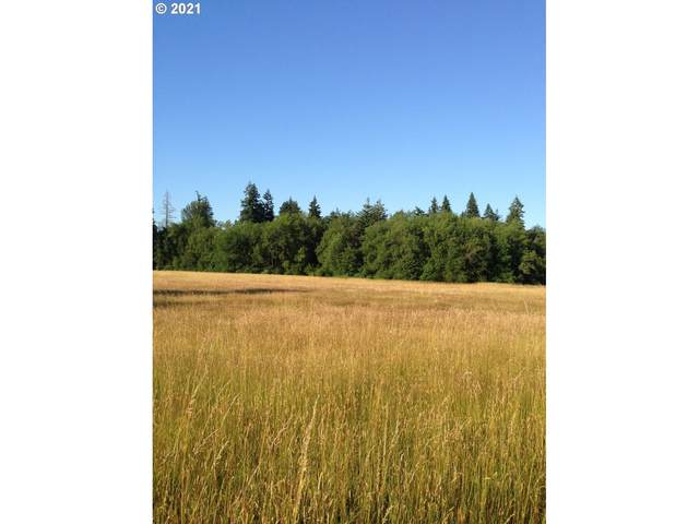 13200 NE 152nd Ave, Brush Prairie, WA 98606 (MLS #21237032) :: Real Estate by Wesley