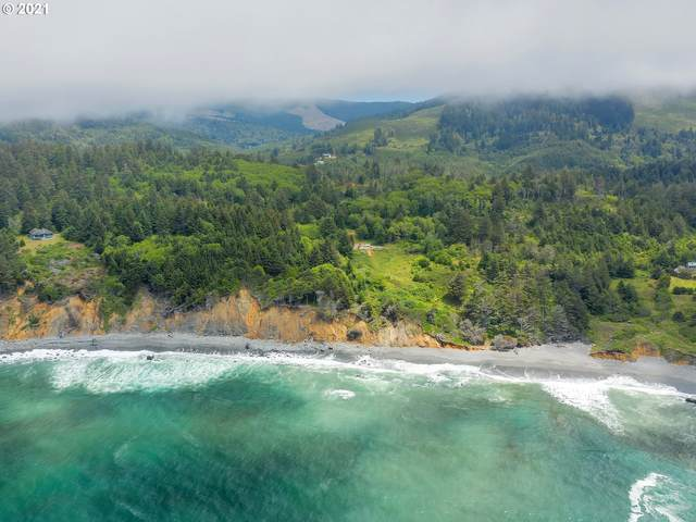 0 Pigeon Point Rd, Gold Beach, OR 97444 (MLS #21238916) :: The Haas Real Estate Team
