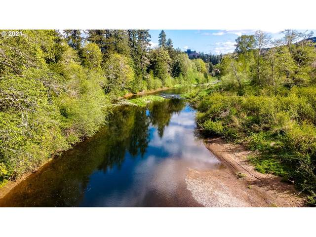 St Hwy 6 #5, Chehalis, WA 98532 (MLS #21241811) :: The Pacific Group
