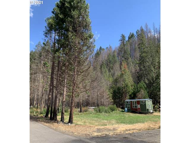 Rose St #3100, Blue River, OR 97413 (MLS #21256690) :: The Haas Real Estate Team