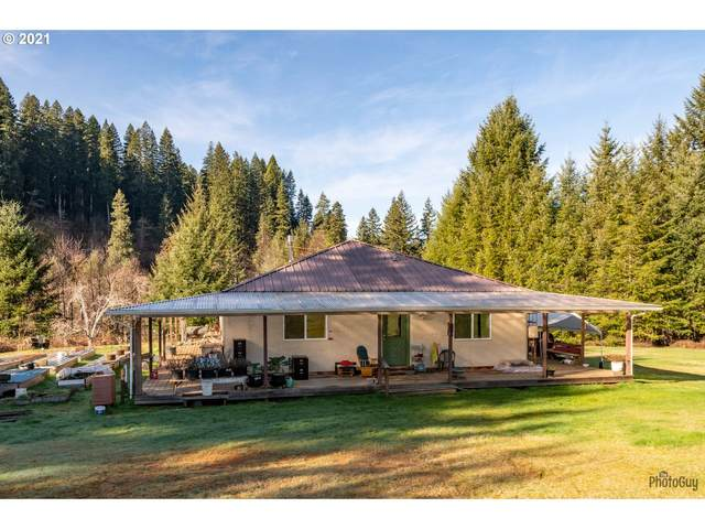 10518 E Five Rivers Rd, Tidewater, OR 97390 (MLS #21271096) :: Coho Realty