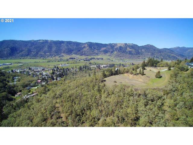 505 Aker Dr, Myrtle Creek, OR 97457 (MLS #21274527) :: Townsend Jarvis Group Real Estate