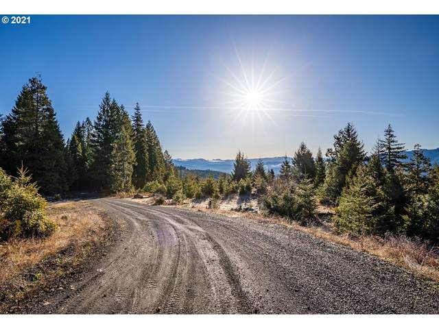 0 Flounce Rock Rd, Prospect, OR 97536 (MLS #21274703) :: Fox Real Estate Group