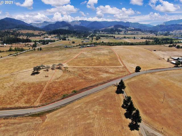 0 Valley View Rd, Sutherlin, OR 97479 (MLS #21275121) :: Beach Loop Realty