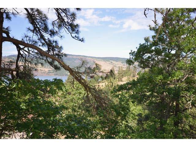 Huskey Rd, Mosier, OR 97040 (MLS #21280366) :: Tim Shannon Realty, Inc.