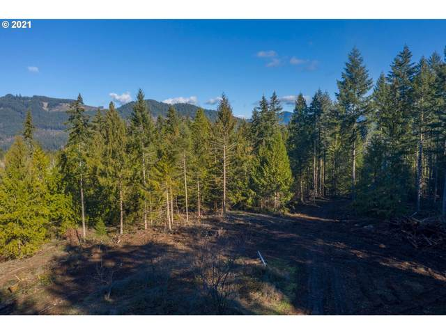 0 Minnow Creek Rd, Lowell, OR 97452 (MLS #21290597) :: Duncan Real Estate Group