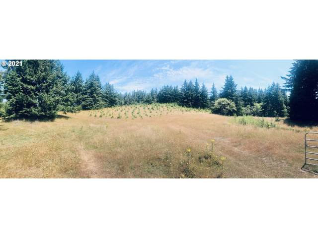 45721 Hwy 101, Langlois, OR 97450 (MLS #21298800) :: Townsend Jarvis Group Real Estate