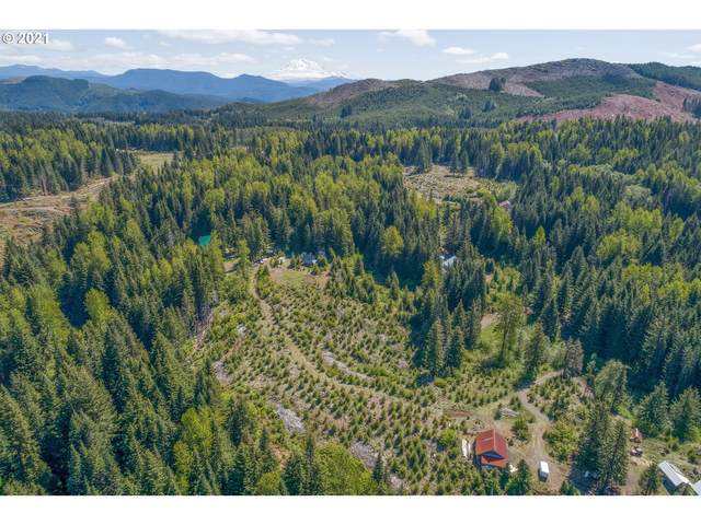 9 Deer Ln #9, Cougar, WA 98616 (MLS #21300015) :: Next Home Realty Connection