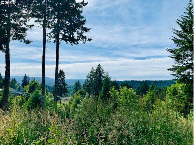 45539 NW Mead Way, Banks, OR 97106 (MLS #21305806) :: Premiere Property Group LLC