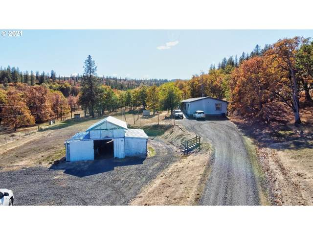 2202 Dell Vista Dr, Mosier, OR 97040 (MLS #21315629) :: Premiere Property Group LLC