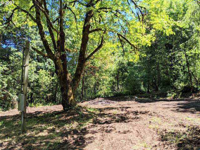 41205 SW Pumpkinseed Rd, Willamina, OR 97396 (MLS #21319491) :: Fox Real Estate Group