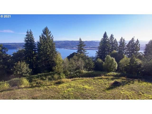 171 W Newt Estates Rd, Longview, WA 98632 (MLS #21323285) :: Premiere Property Group LLC