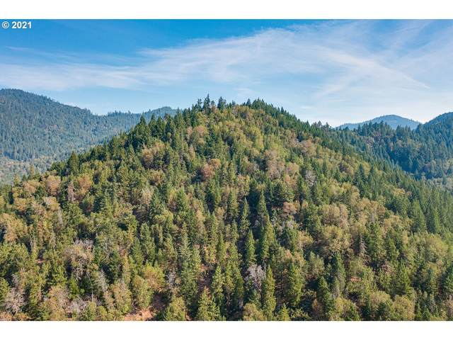 0 Greenback Mine Rd, Sunny Valley, OR 97497 (MLS #21323395) :: The Liu Group