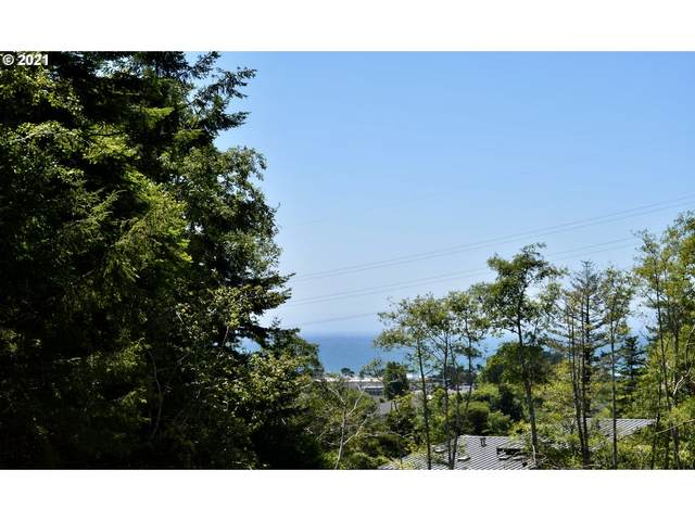 Leith Rd, Gold Beach, OR 97444 (MLS #21328883) :: Cano Real Estate