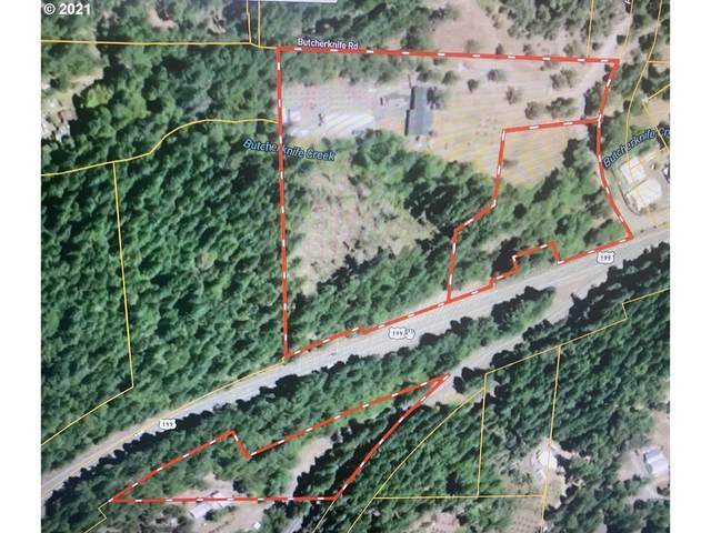 115 Butcherknife Creek Rd, Wilderville, OR 97543 (MLS #21329929) :: The Liu Group