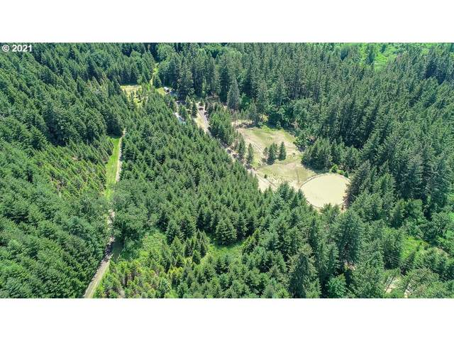 5898 Boswell Rd, Yoncalla, OR 97499 (MLS #21333501) :: Townsend Jarvis Group Real Estate