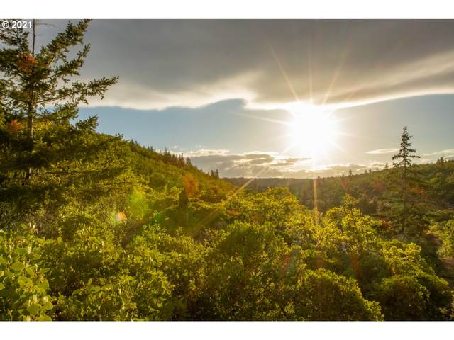 Back Walters Rd, Maupin, OR 97037 (MLS #21343881) :: McKillion Real Estate Group
