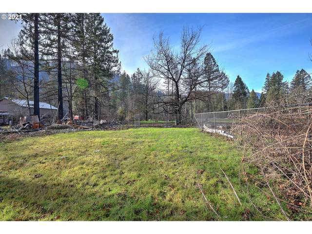 49215 Mckenzie Hwy, Vida, OR 97488 (MLS #21350603) :: Change Realty