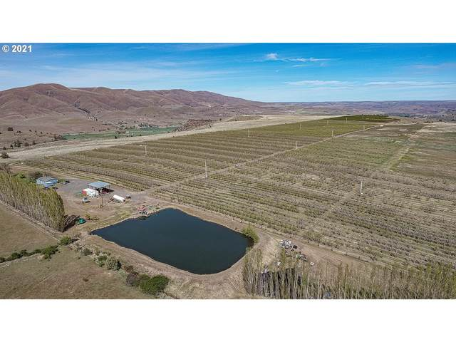 82088 Wamic Mkt Rd, Tygh Valley, OR 97063 (MLS #21351235) :: Premiere Property Group LLC