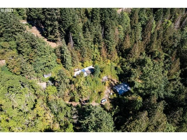 16622 S Copley Ct, Oregon City, OR 97045 (MLS #21358208) :: McKillion Real Estate Group