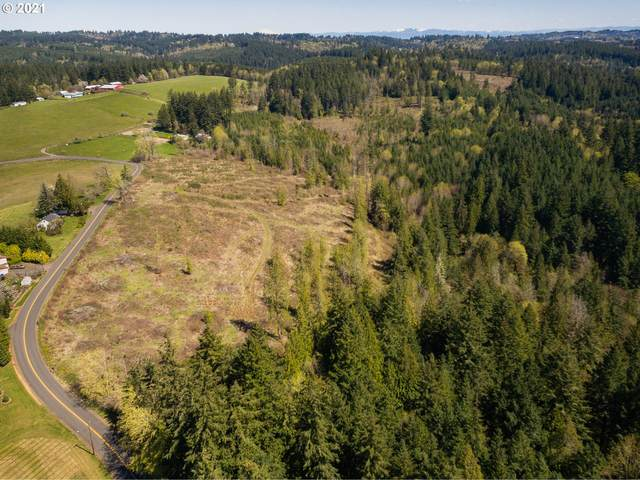 14238 NW Logie Trl, Hillsboro, OR 97124 (MLS #21359875) :: Next Home Realty Connection