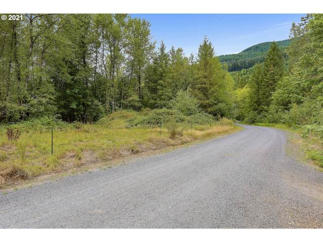 22463 E Brightwater Way, Rhododendron, OR 97049 (MLS #21369502) :: The Pacific Group