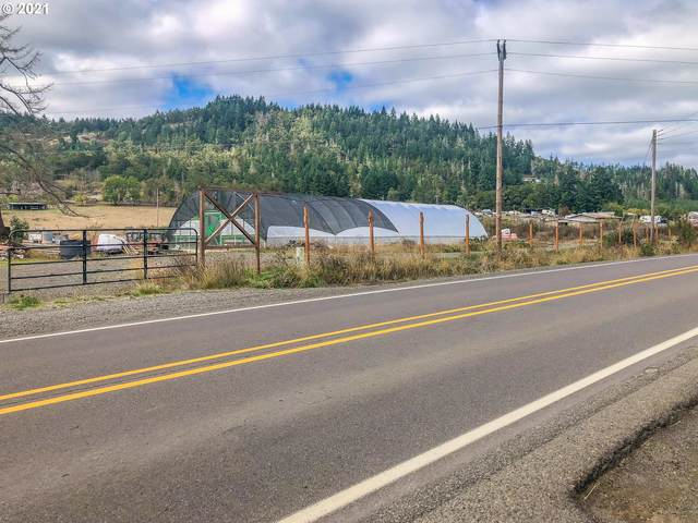 123 Lower Crest Rd, Oakland, OR 97462 (MLS #21389507) :: Real Tour Property Group