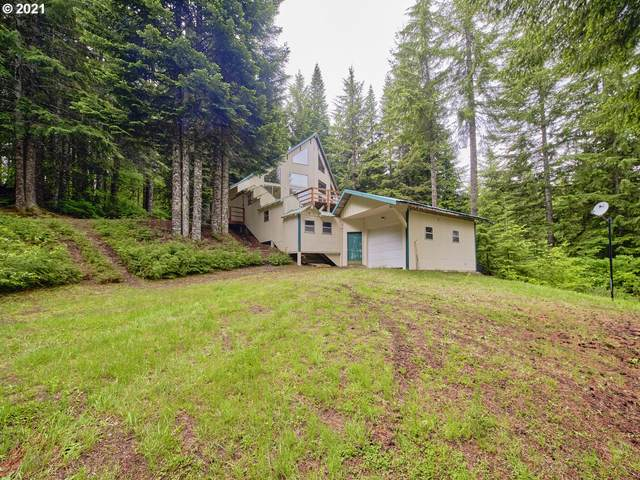 4 Mt Adams Dr, Cougar, WA 98616 (MLS #21389768) :: Next Home Realty Connection