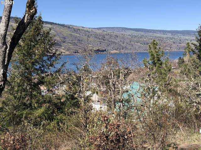 895 Fifth Ave, Mosier, OR 97040 (MLS #21398366) :: The Pacific Group