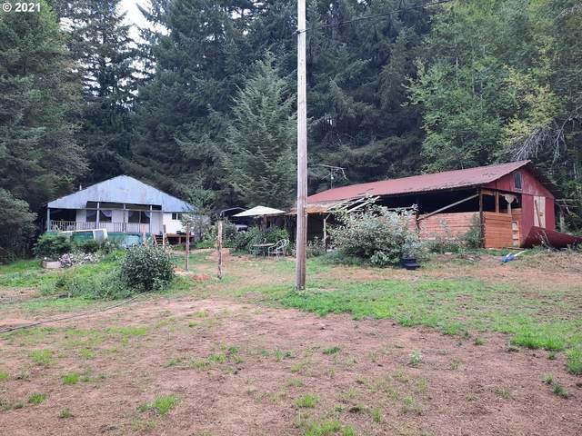90970 Nelson Mountain Rd, Deadwood, OR 97430 (MLS #21402720) :: Gustavo Group