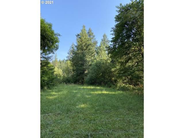 Mcbeth, Eugene, OR 97405 (MLS #21409193) :: Lux Properties
