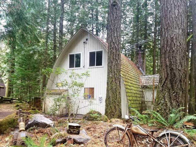 23704 E Cedar Point Ct, Rhododendron, OR 97049 (MLS #21416022) :: Lux Properties
