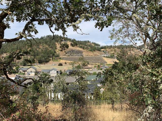 1911 NW Excello Dr, Roseburg, OR 97471 (MLS #21429763) :: Townsend Jarvis Group Real Estate