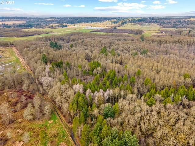 0 Jackson Hwy Lot 4, Toledo , WA 98591 (MLS #21430711) :: Townsend Jarvis Group Real Estate