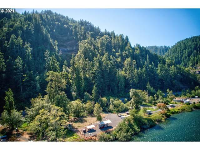 0 State Highway 38, Reedsport, OR 97467 (MLS #21433225) :: McKillion Real Estate Group