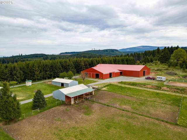 19601 S Redhouse Rd, Molalla, OR 97038 (MLS #21440833) :: Change Realty