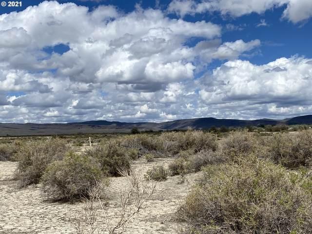 0 Thousand Springs Ln, Summer Lake, OR 97640 (MLS #21447529) :: Beach Loop Realty