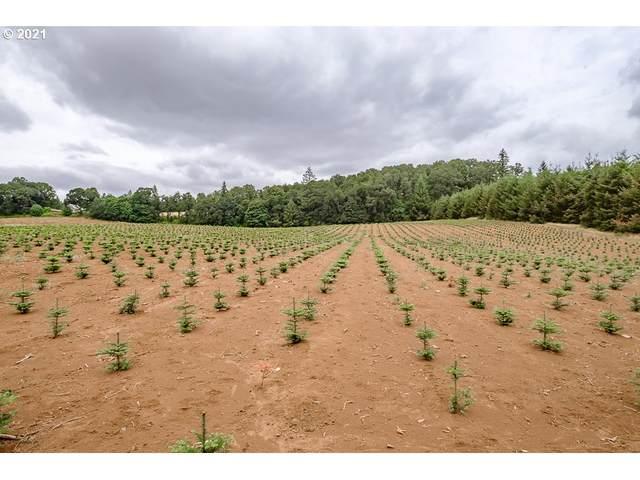 42820 Mount Pleasant Dr, Scio, OR 97374 (MLS #21455054) :: Oregon Farm & Home Brokers