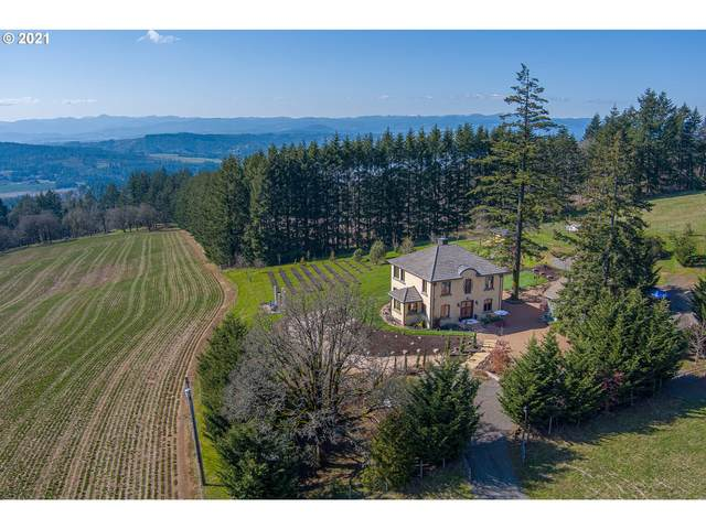 24015 NE Guenther Rd, Hillsboro, OR 97123 (MLS #21456416) :: Tim Shannon Realty, Inc.