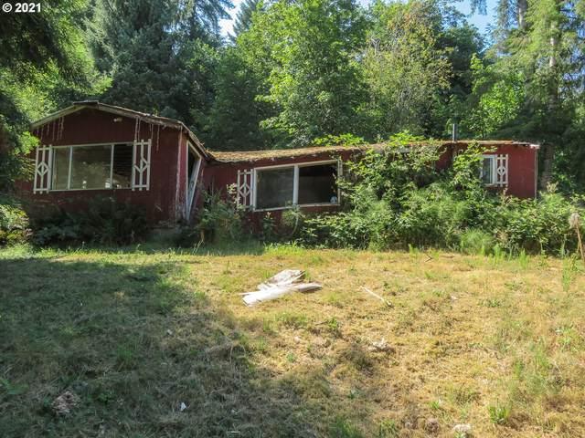 Red Bluff Rd, Elsie, OR 97138 (MLS #21459508) :: Premiere Property Group LLC