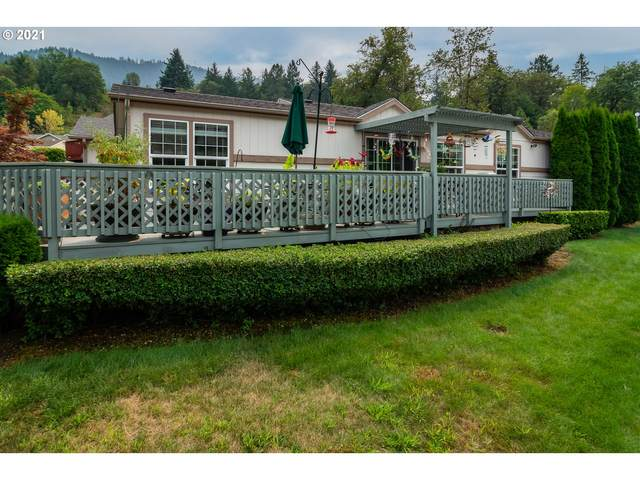 119 Kimberly Way, Canyonville, OR 97417 (MLS #21474356) :: Keller Williams Portland Central